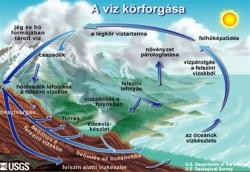 Víz a környezetünkben